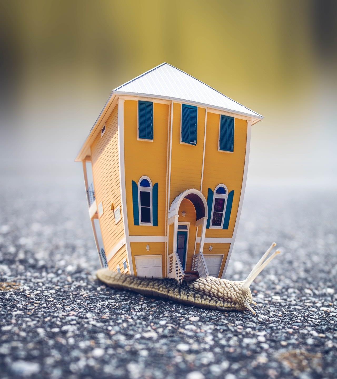 a house miniature on a slug